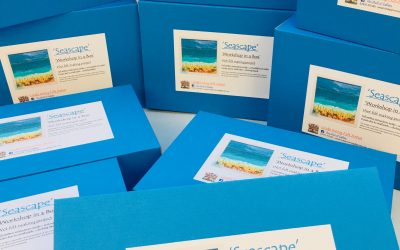 Seascape – Workshop in a Box